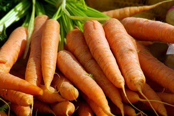 Как убрать морковь на хранение