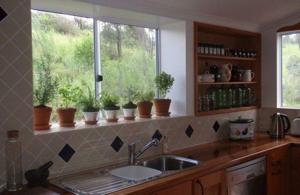 Culinary Herbs on Windowsill 752x490
