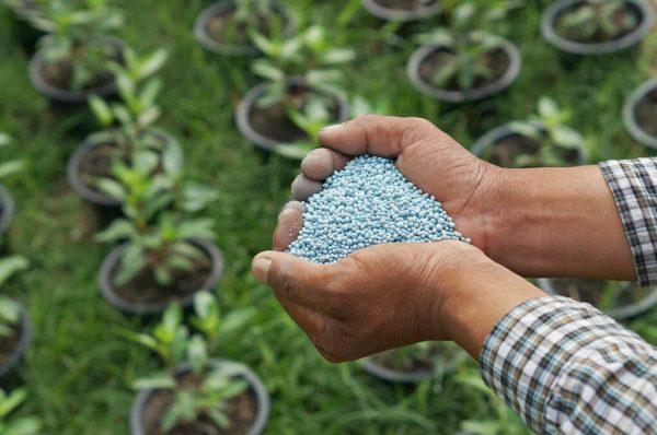 mineral fertilizers 2 1024x679