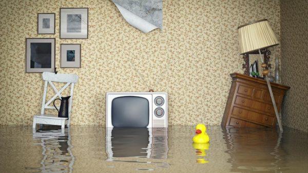 кому звонить если затопили соседи