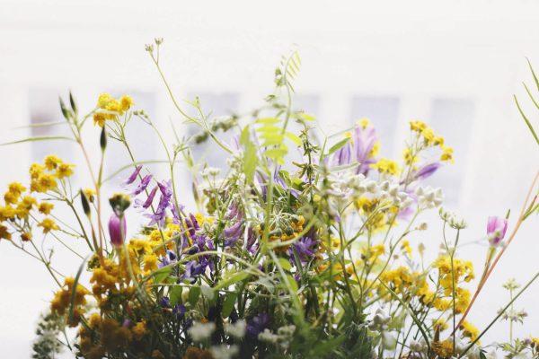 Чудесное влияние весны на человека и его настроение