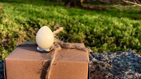 Неизвестные целебные свойства куриных яиц: бабушкины советы