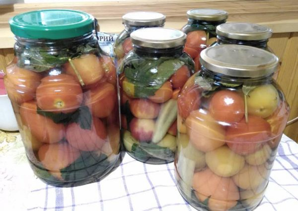 Летний рецепт. Консервированные помидоры — с малиновыми листьями!