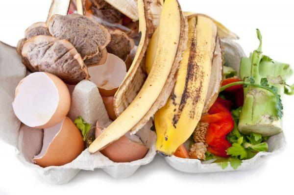 Можно ли из пищевых отходов получить удобрение и в чем же подвох?